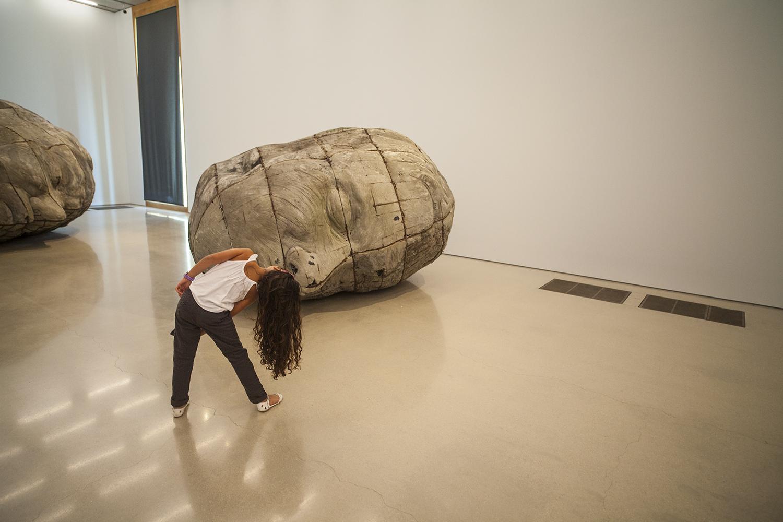 PAMM | Pérez Art Museum